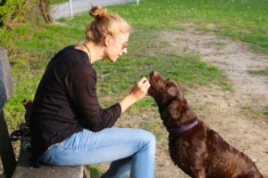 Frau gibt Hund ein Leckerli