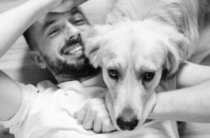 Hund liegt entspannt auf sein Herrchen