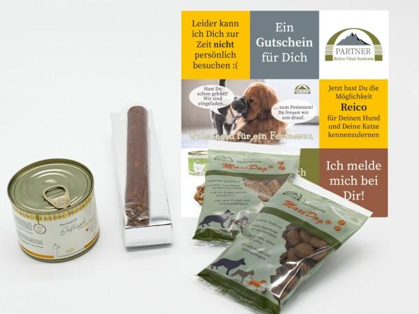 Kostenloses Hundefutter von Reico testen
